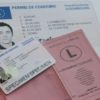 Luxembourg Driver's License