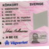 Swedish driver's license